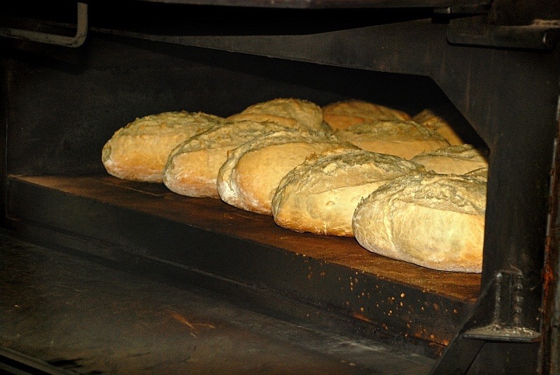 Pa cuit amb llenya.Bread cooked with firewood.
